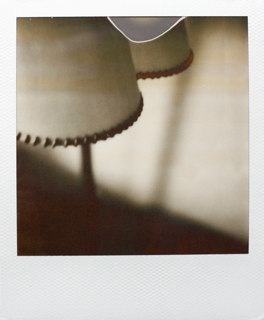 PX 100 Silver Shade | First Flush for SX-70